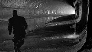 Spotlight of the Month: The Third Man (1949)