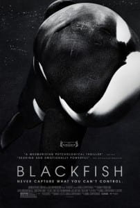 Blackfish - Theatrical Poster - Courtesy of Magnolia Pictures and CNN Films