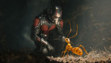 Photo of Ant-Man – Trailer #2